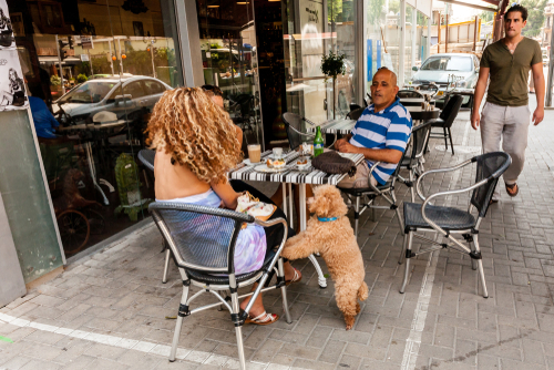Кафе в Тель-Авиве. Фото: VittoriaChe shutterstock